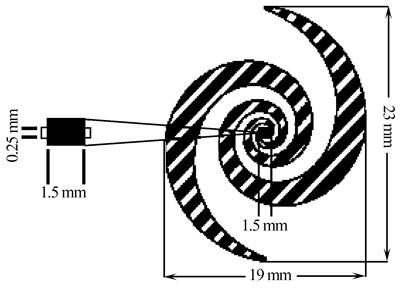 螺旋型整流二极管天线结构
